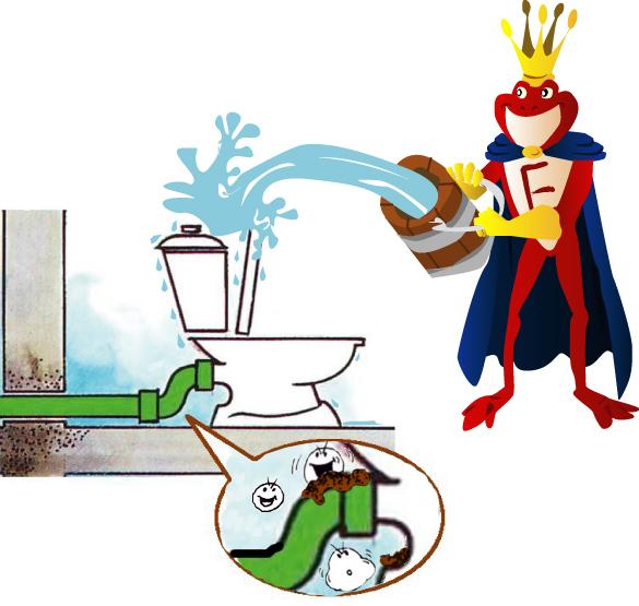 La Methode Ideale Pour Les Toilettes Tres Sales
